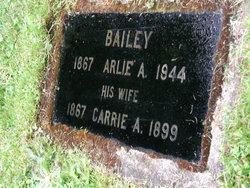 "Caroline Anna ""Carrie"" <I>Bronston</I> Bailey"