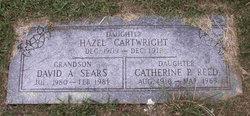Hazel Cartwright