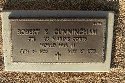 Robert E Cunningham