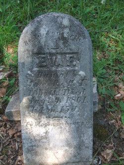 Eva F. Abbott