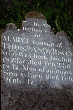 Infant Son of Thos. P. & Mary J. Anderson