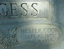 Hester <I>Cook</I> Burgess