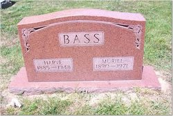 Harve Bass