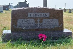 Frank Herrman
