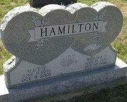 Alice E Hamilton