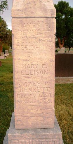 Mary Elizabeth <I>Ellison</I> Bennett
