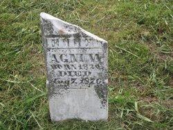 Nellie Ellen <I>Martin</I> Agnew