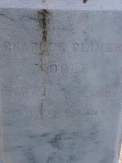 Charles Oliver Woolf