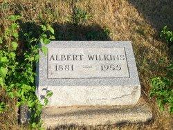 David Albert Wilkins
