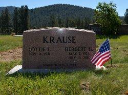 Herbert Henry Krause