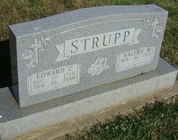 Edward C Strupp