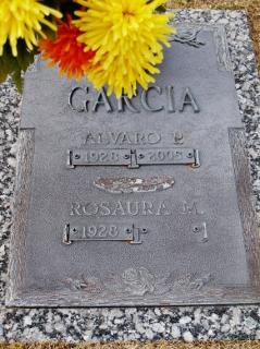 Alvaro P Garcia