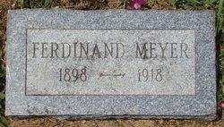 Ferdinand Adolph Meyer