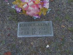 Bernice Akins