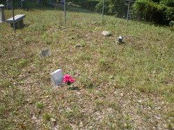 Elzie Fletcher Cemetery