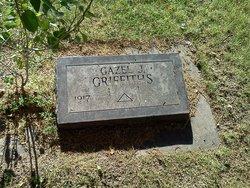 Gazel <I>Johnson</I> Griffiths