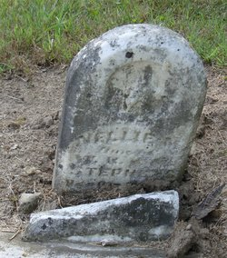Nellie M Stephens