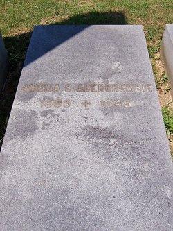 Amelia S. <I>Seyfert</I> Abercrombie