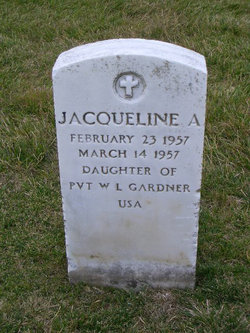 Jacqueline A Gardner