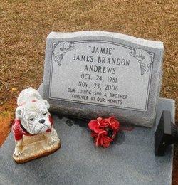 James Brandon Andrews