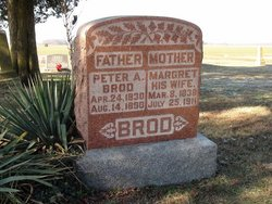 Peter A Brod