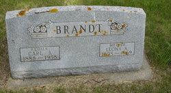 Carl Julius Ernest Emil Brandt