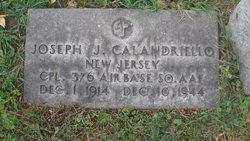 Corp Joseph J Calandriello