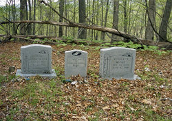 Luther and Bitha McFall Cemetery
