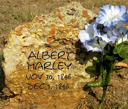 Albert Marley