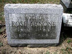 Rose <I>Rosanova</I> Arnone