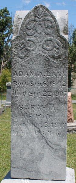 Sarah A. Lane
