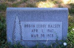 Robyn Leroy Halsey