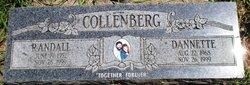 Dannette Collenberg