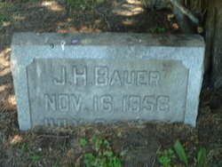 John H Bauer