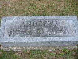Nellie May <I>Bogan</I> Andrews