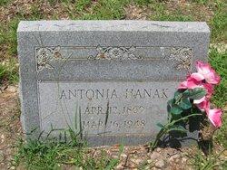 Antonia <I>Becica</I> Hanak