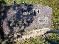 Almer Merton Smith