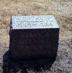 Daniel F Behrens