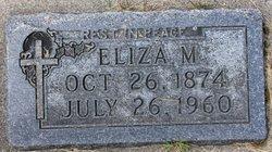 Eliza Marie <I>Larson</I> Johnson