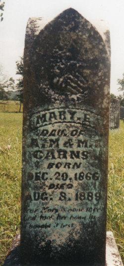 Mary Ellen Carns