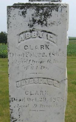 Abby Clark