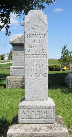 Asenath J G Creedon