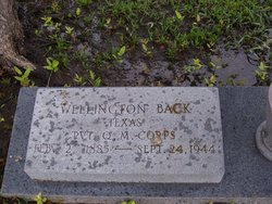 Wellington Back