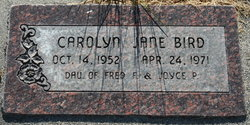 Carolynn Jane Bird