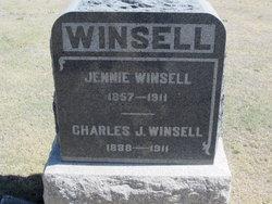 Charles J Winsell