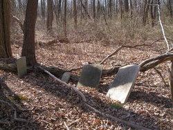 McLoughlin Family Burial Ground
