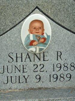 Shane R Triplett