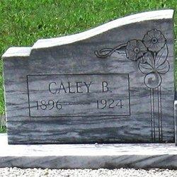 Caley <I>Brooks</I> Bradberry