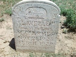 Evelyn Lavelle Armes