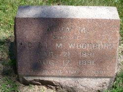 Alva M Woodbury